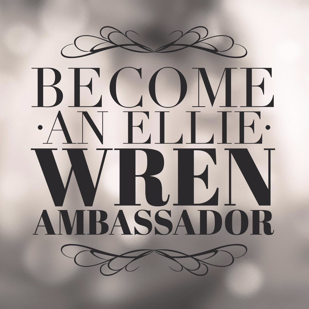 Ellie Wren Custom Wedding Shoes Become An Ellie Wren Ambassador